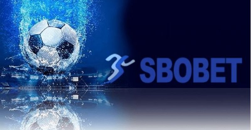 Top Ten Sbobet Betting Rules You... - Opinion - What Mobile